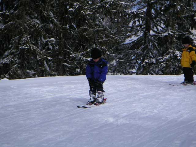 ski_professional