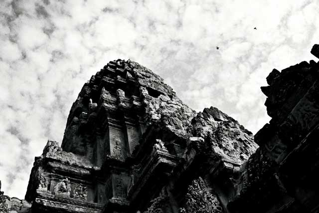 angkor-2-birds